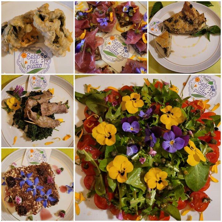 erbe nel piatto fiori piatti