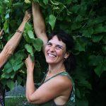 donna raccoglie foglie da piante